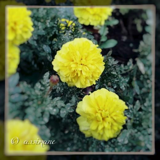 Fotor_144636837459960.jpg