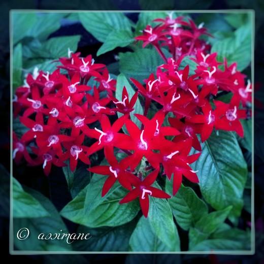 Fotor_144849570765871.jpg